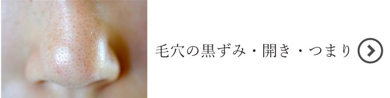 新肌悩み別(毛穴のつまり・開き・黒ずみ)